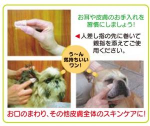 ear-skincare